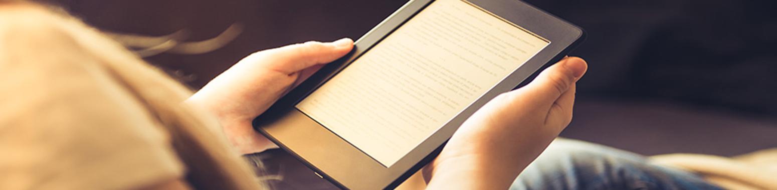 Si buscas un E-Book pincha aquí